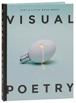 VISUAL POETRY (JUST A LITTLE BOOK ABOUT) (9788415308621)