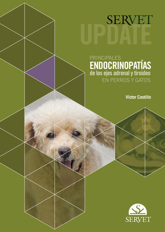 SERVET UPDATE. PRINCIPALES ENDOCRINOPATíAS DE LOS EJES ADRENAL Y TIROIDEO EN PE «R»