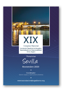 Ponencias XIX Congreso Sevilla (noviembre 2019), sobre especialización en responsabilidad civil y seguro
