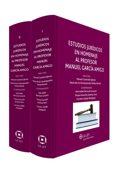 Estudios jurídicos en homenaje al profesor Manuel García Amigo I