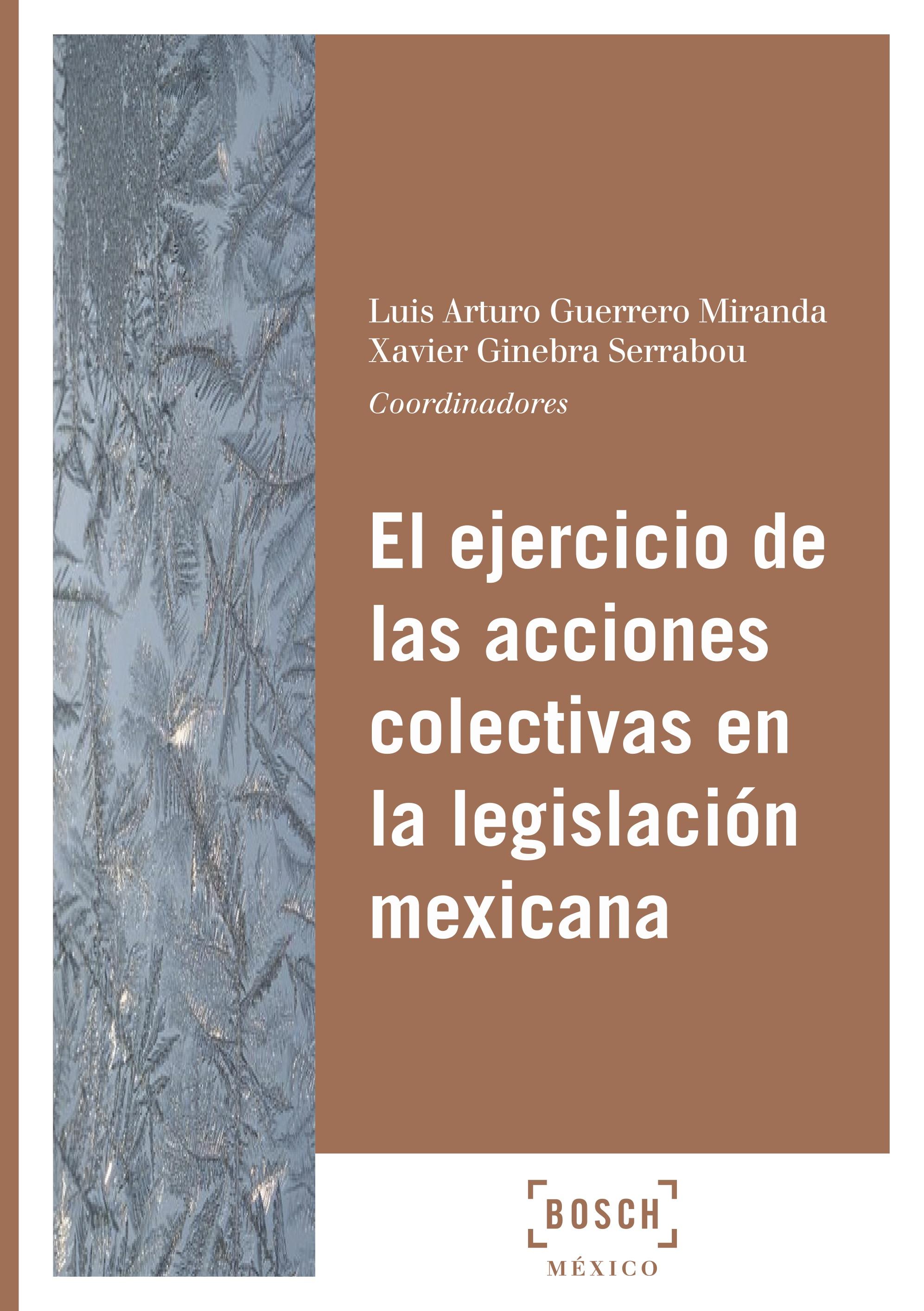 El ejercicio de las acciones colectivas en la legislación mexicana