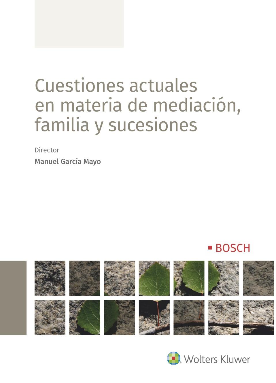 CUESTIONES ACTUALES EN MATERIA DE MEDIACION FAMILIA Y SUCESIONES