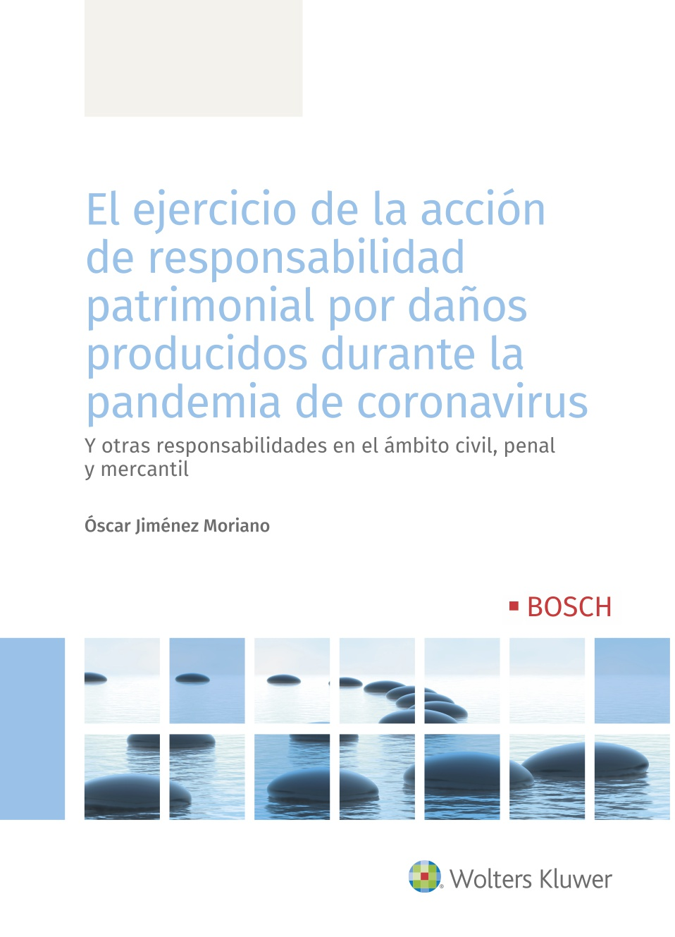 El ejercicio de la acción de responsabilidad patrimonial por daños producidos  durante la pandemia de coronavirus   «Y otras responsabilidades en el ámbito civil, penal y mercantil»