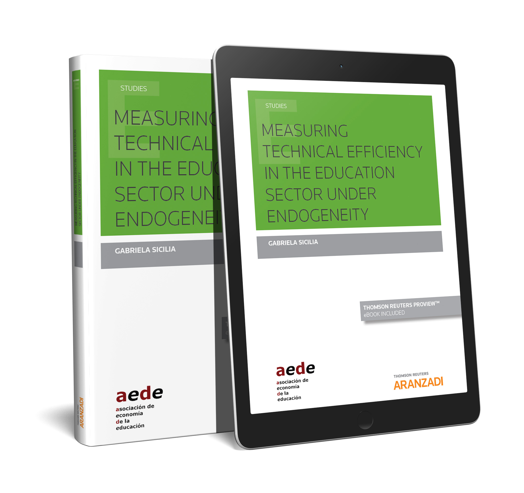 Measuring technical efficiency in the education sector under endogeneity (Papel + e-book)